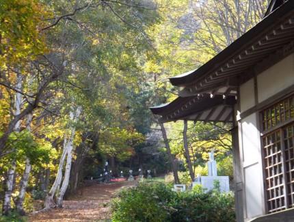秋の参道2
