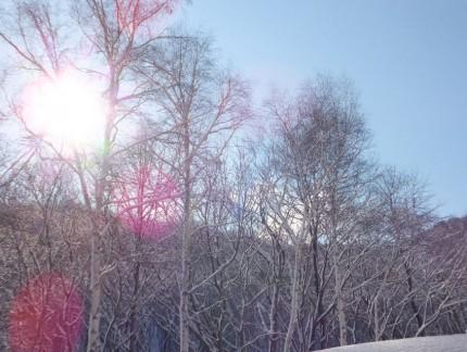 本堂よりの冬景色4