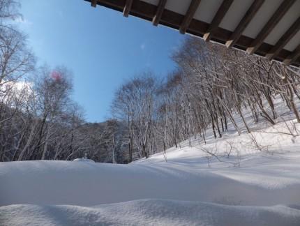 本堂よりの冬景色2